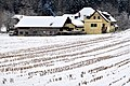 Pörtschach Winklern Gaisrückenstraße 77 Zocklwirt vulgo Rumasch 31012010 4915.jpg