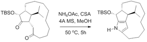 Paal–Knorr synthesis - Roseophillin Paal-Knorr