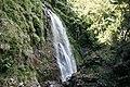 P Brun - red Cedar Falls in Dorrigo NP.jpg