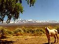 Paisaje montañoso en San Juan.jpg