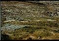 Panorama shilo 05.jpg