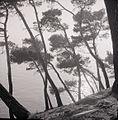 Paolo Monti - Serie fotografica - BEIC 6342466.jpg