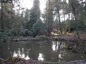 Lisvane - Part of Parc Cefn Onn Country Park, Lisvane