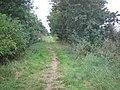 Park Lane (track) looking south - geograph.org.uk - 549667.jpg