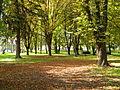 Park Pirot.JPG