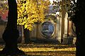 Park pałacowy jesienią 02.JPG