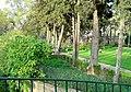 Parque Municipal de Oeiras - Portugal (240542899).jpg