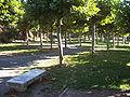 Parque de Vista Alegre en Haro.jpg