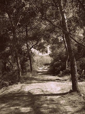Agistri - Image: Path at Mareza