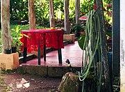 Patio de una casa rural (1264809606) La Tigra, Alajuela, Costa Rica.jpg