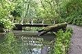 Patrick Wood bridge 1.jpg