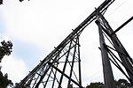 Percy Burn Viaduct from below.jpg