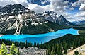 Peyto Lake View Point.jpg