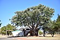 Pilansberg National Park, North West, South Africa (20532286855).jpg