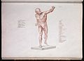 Plate 12 from Anatomie du Gladiateur. Wellcome L0011876.jpg