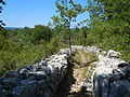 Plateau des Gras - Chemins.jpg