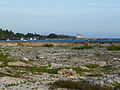 Playa Girón (14).jpg