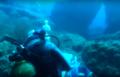 Plongée André Laban à Porquerolles.png