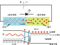 上図 発光ダイオードの回路図と、電子・正孔の分布を模式的に描いた図。下図 発光ダイオードのバンド構造と、それによる発光過程の説明。横軸が距離または位置、縦軸が電子または正孔のポテンシャルエネルギー(エネルギー準位)を表す。