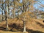 Pocahontas Mounds