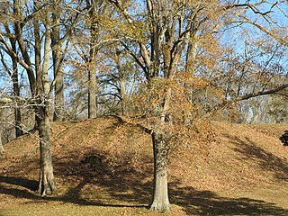 Pocahontas Mounds archaeological site in Hinds County, Mississippi