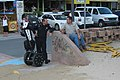 Police officer and friend in Carolina, Puerto Rico.jpg
