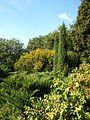 Poltava Botanical garden (50).jpg