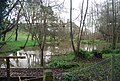 Pond by the footpath over The Lilk - geograph.org.uk - 1611077.jpg