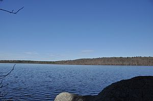 Blue Hills Reservation - Ponkapoag Pond, with Great Blue Hill visible in the background