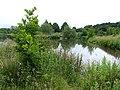 Pool for Anglers, near Codsall, Staffordshire - geograph.org.uk - 474841.jpg
