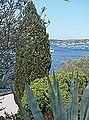 Port Lligat (Espagne) (14451201080).jpg