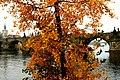 Prague IMG 1268 (378143978).jpg