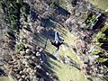 Prasomaso in volo - panoramio (2).jpg