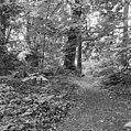 Prieel met bospad - Zevenaar - 20222127 - RCE.jpg