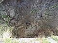 Prohodna cave 084.jpg