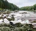 Prokudin-Gorsky.Suna River.jpg