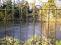 Prospect Park pond - geograph.org.uk - 649469.jpg