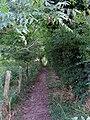 Public footpath - geograph.org.uk - 976686.jpg