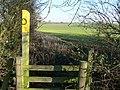 Public footpath to Kirby Muxloe - geograph.org.uk - 703281.jpg