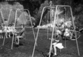 Queensland State Archives 1577 Playground Windsor State School c 1950.png
