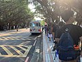 Queue for School Bus in NTHU, Taiwan.jpg