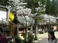 File:Quick 360 - Daishoin Buddhist Temple in Miyajima.webm