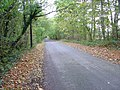 Quiet Country Road south of Staplefield, West Sussex - geograph.org.uk - 69942.jpg