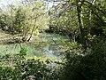 Réserve Naturelle du Lez (2397598966).jpg