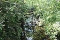 Réserve naturelle Marais Lavours Aignoz Ceyzérieu 73.jpg