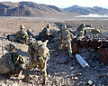 ROYAL MARINE COMMANDOS PRACTISE FIGHTING SKILLS IN DESERT HEAT MOD 45158621.jpg