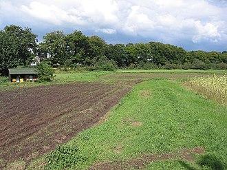 Celtic field - Celtic fields at the Wekeromse Zand in Gelderland, Netherlands