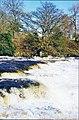 Rapids on the Ure below Aysgarth - geograph.org.uk - 123513.jpg