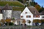 Rapperswil - Endingerturm - Einsiedlerhaus - Bühlerallee - ZSG Uetliberg 2012-11-04 15-28-42.JPG
