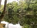 Reflexos no Miño - panoramio.jpg